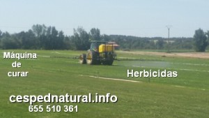 Uso de herbicidas para malas hierbas